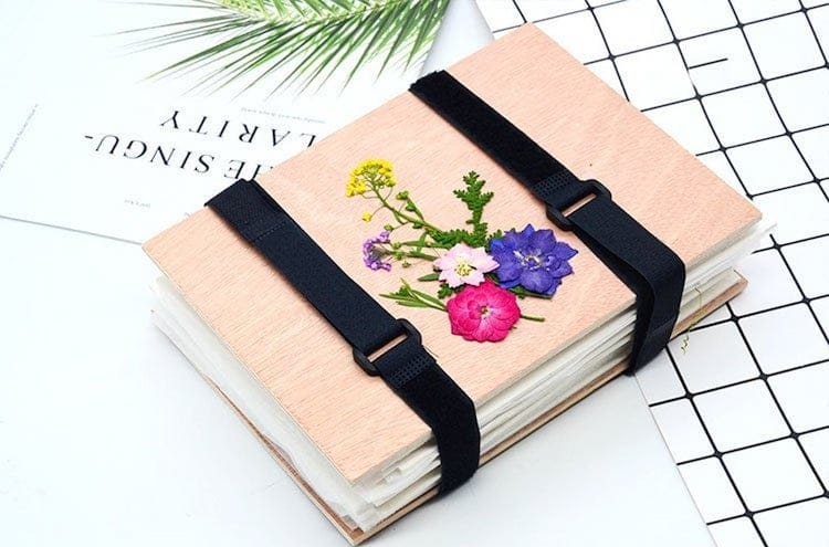 Kit de flores prensadas