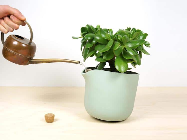 indoor planter with wood plant planters pots buy modern pot concrete stand