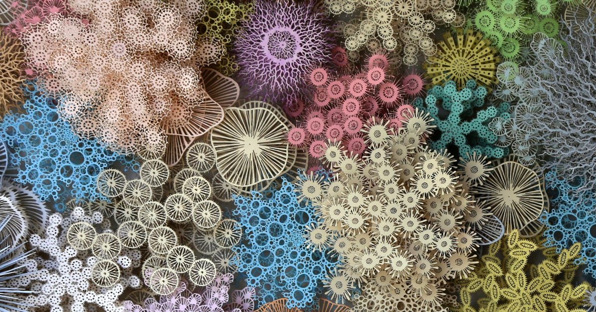 Paper Art Details Similarities Between Human Microbiome And Coral Reef