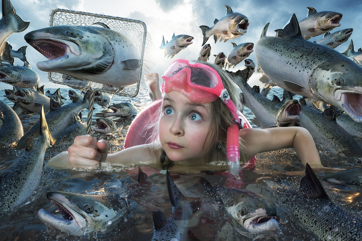 Funny Family Photos by John Wilhelm