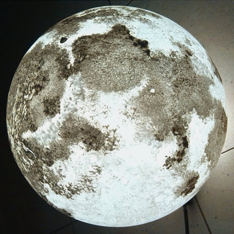 Gifts Inspired by the Moon