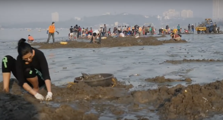 Sky Ocean Rescue Mumbai Beach Clean Up