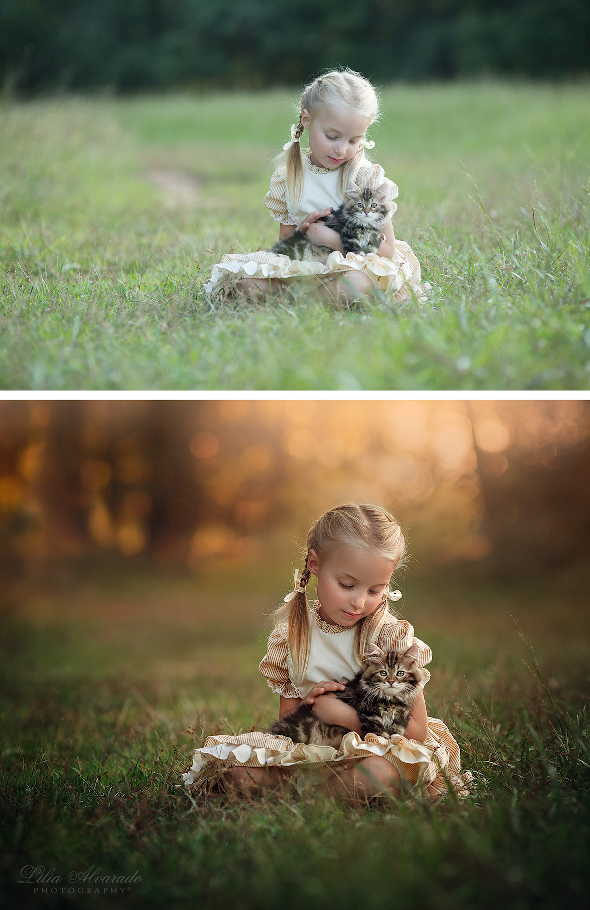 Photo Manipulation Photography by Lilia Alvarado