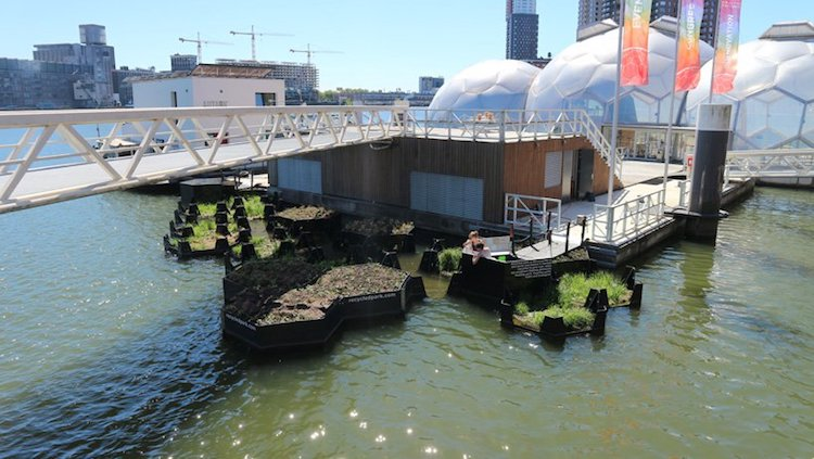 Recycled Park - Floating Garden - Rotterdam