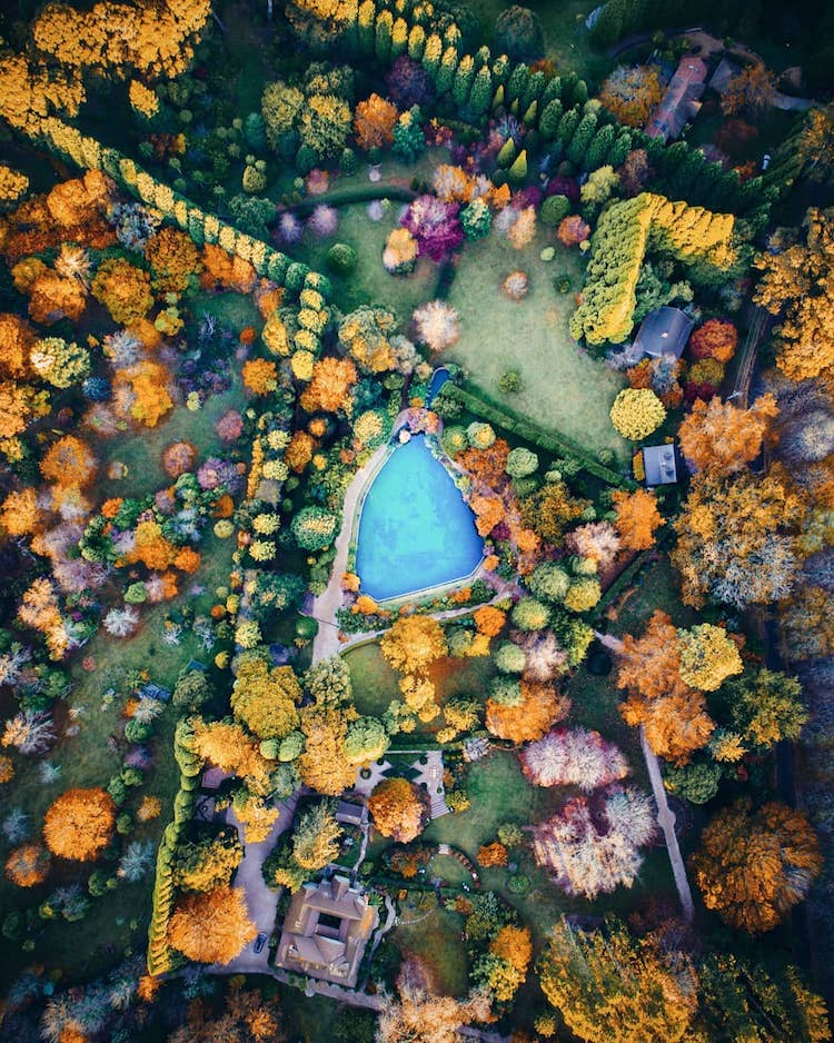 Drone Photography of the Australian Forest