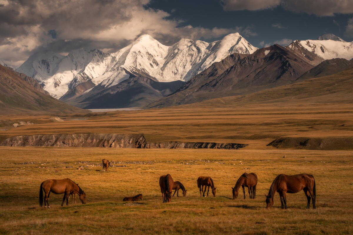 Photo of Kyrgyzstan by Albert Dros
