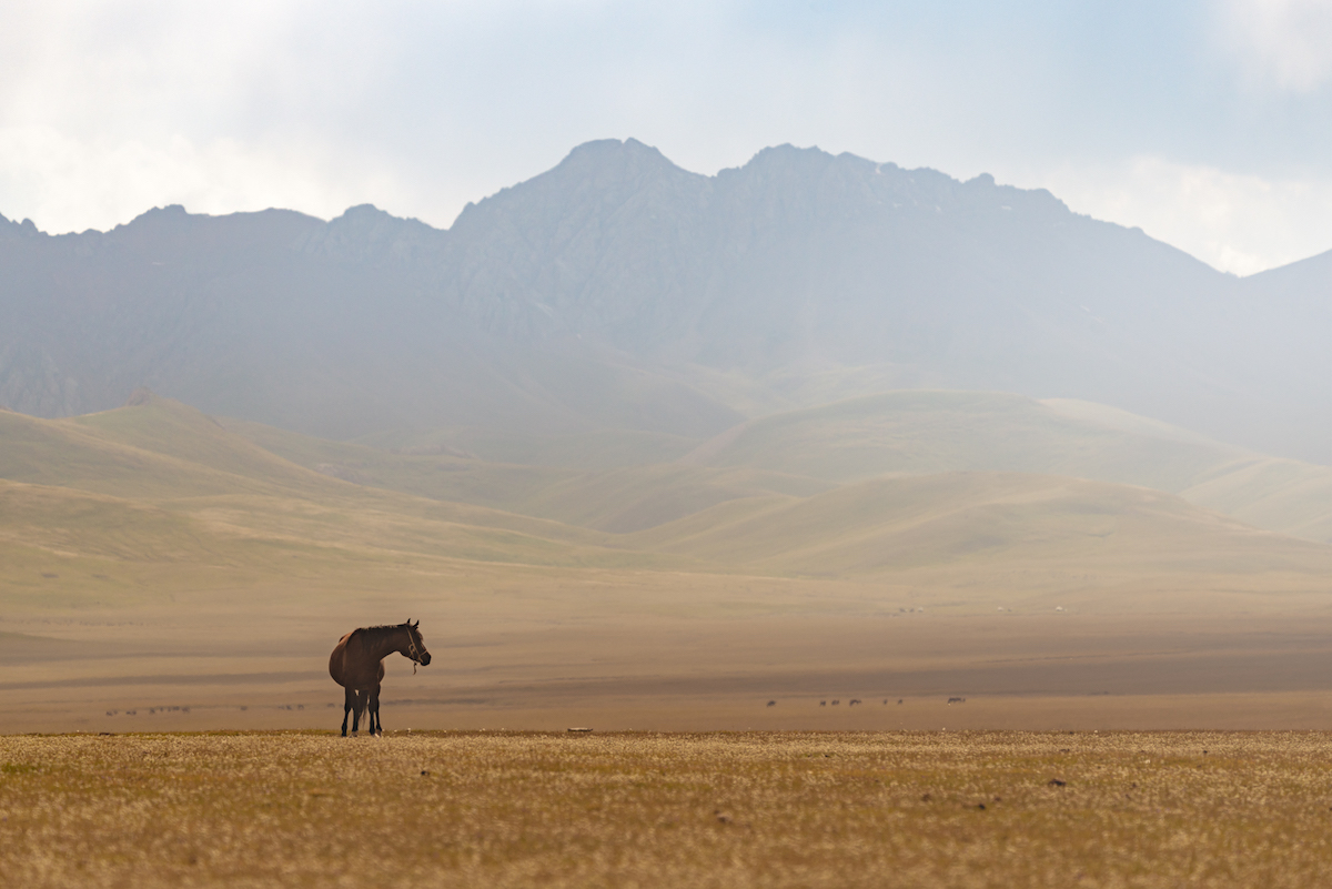Kyrgyzstan Landscape Photography by Albert Dros