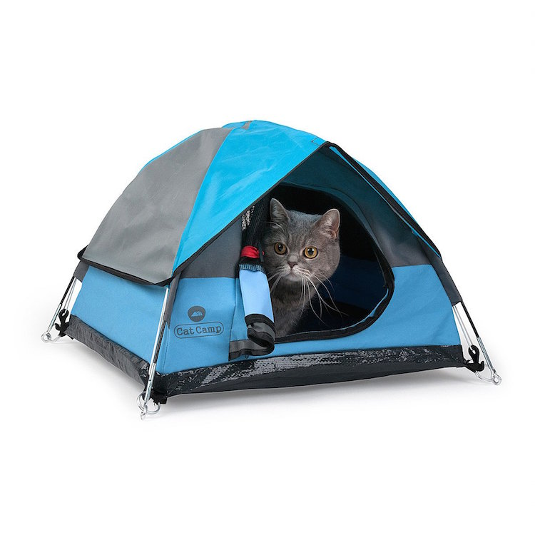 Cat Tent by Cat Camp