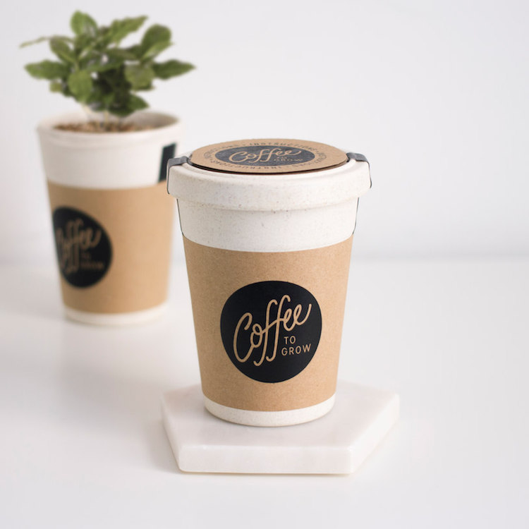 Eco-Friendly Products Grow Your Own Coffee