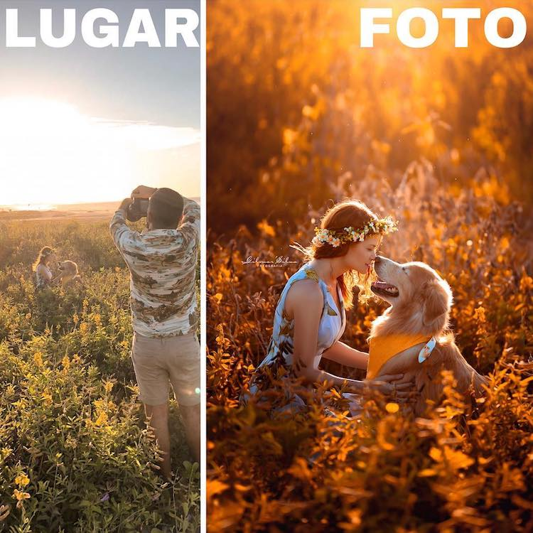 Pet Photography by Gilmar Silva