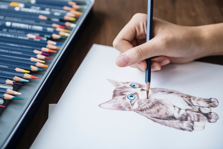 learn how to make your own cat drawing from realistic to stylized