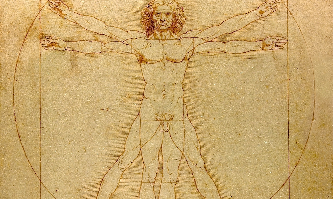 The Significance Of Leonard Da Vincis Famous Vitruvian Man Drawing