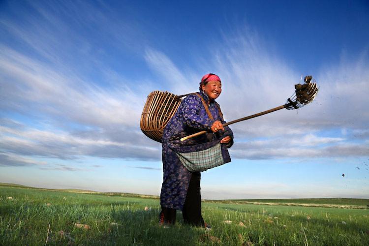 Mongolia by Pascal Mannaerts