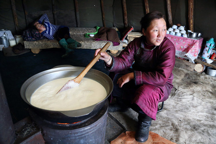 Tsaatan Reindeer Herders in Mongolia by Pascal Mannaerts
