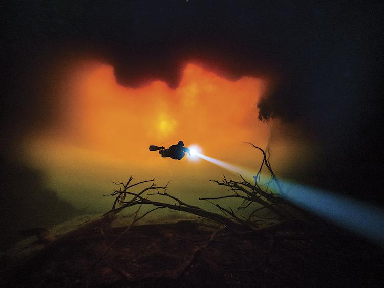 Underwater Photography Contest 2018 Winners Scuba Diving Magazine