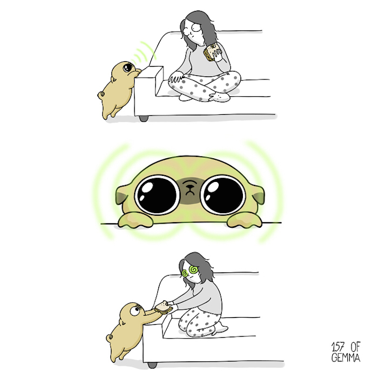 Webcomic Pug Mochi and Gemma Gené