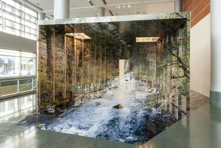 Photography Installation by Chris Engman