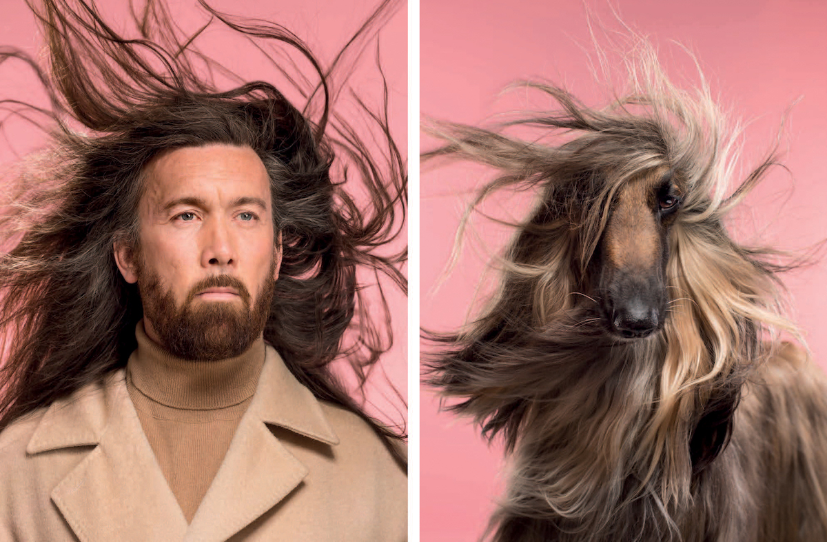 Dog Photography by Gerrard Gethings