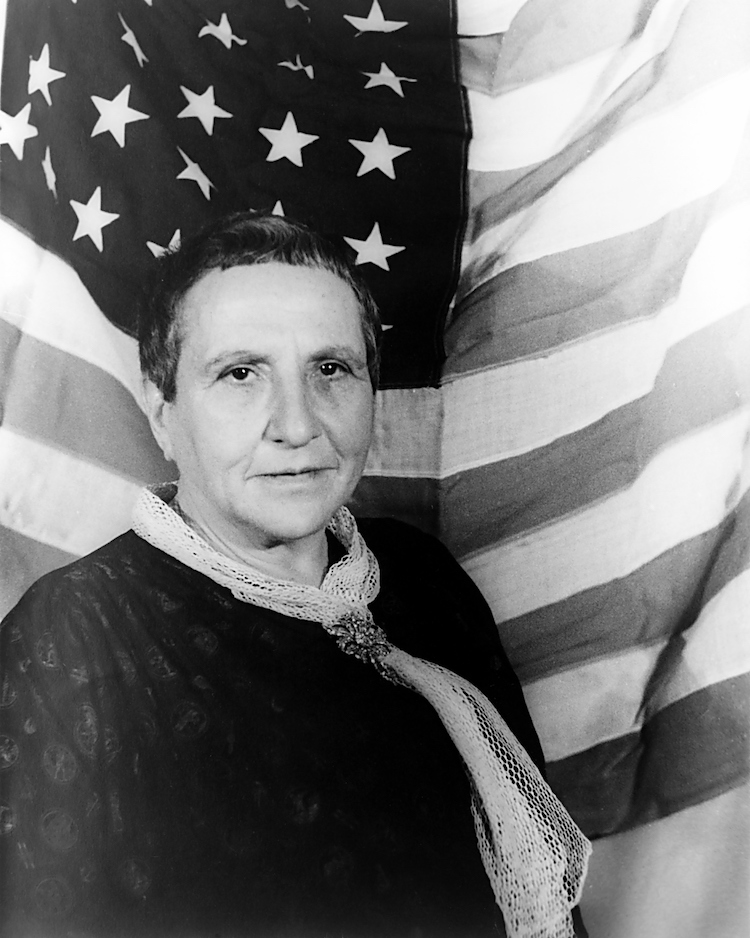 Famous Portraits in Art History Portrait of Gertrude Stein