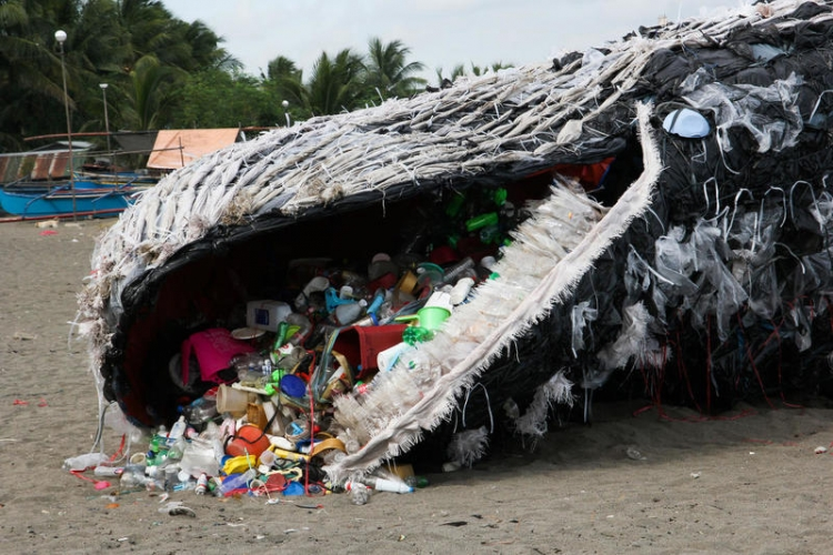 Greenpeace Whale Art Installation in the Philippines