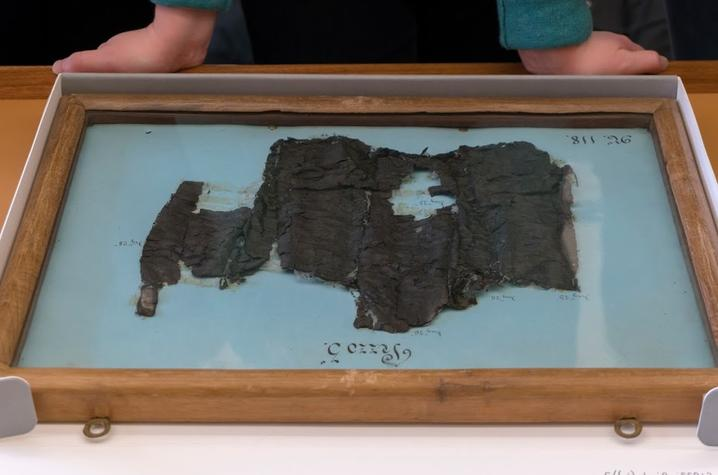 Herculaneum Papyri Fragments