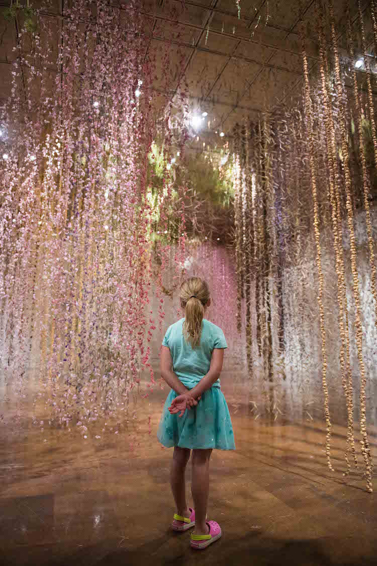 Flower Art Installation Art Community Rebecca Louise Law