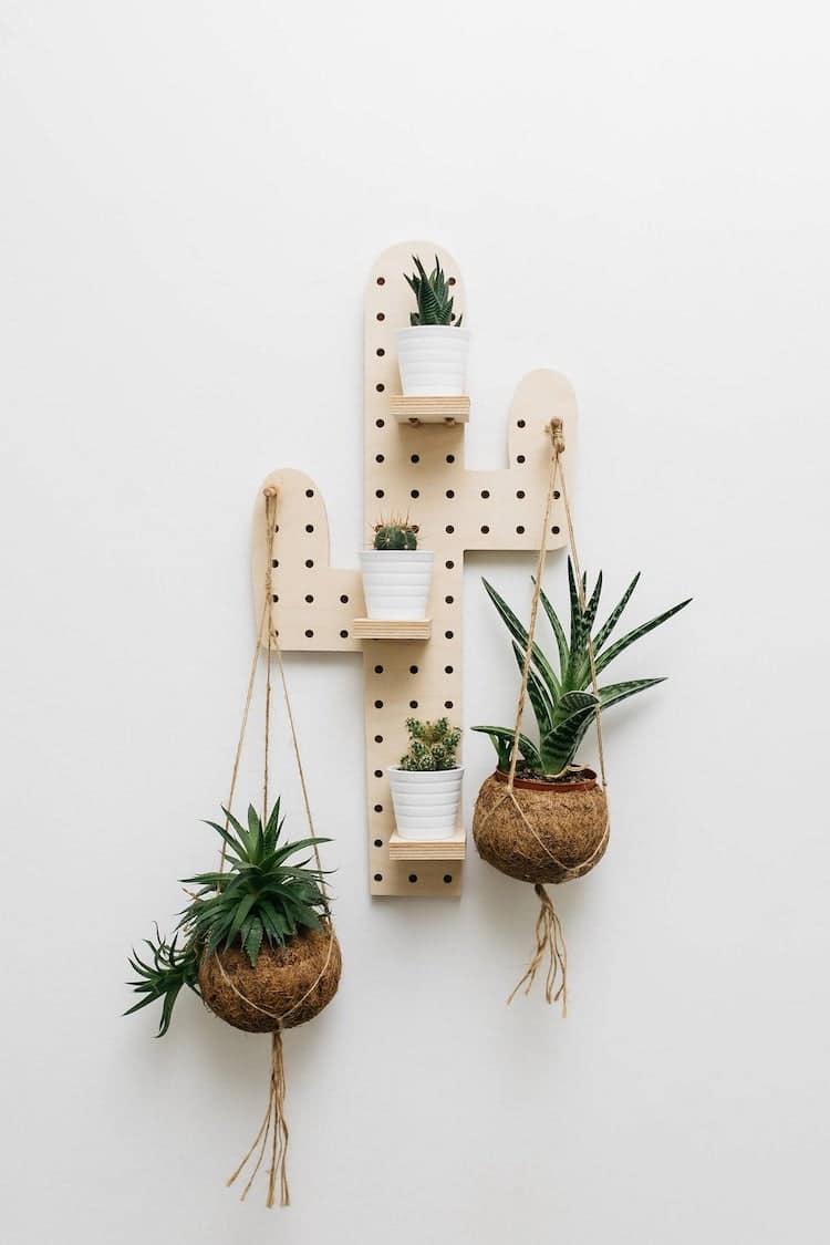 Cactus Shelf