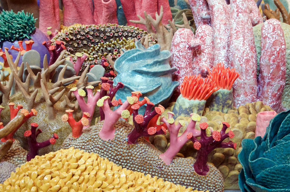 Courtney Mattison Ceramic Coral Reef Coral Reef Conservation Art in Embassies