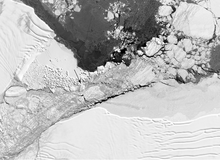 Landsat 8 View of the Rectangular Iceberg NASA