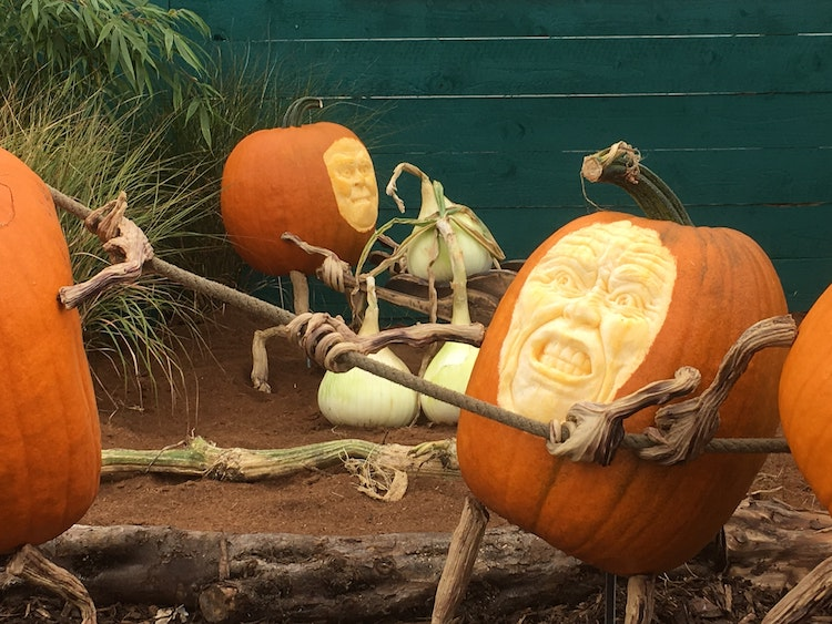 20 Pumpkin Carving Ideas To Take Your Halloween Decor Next Level