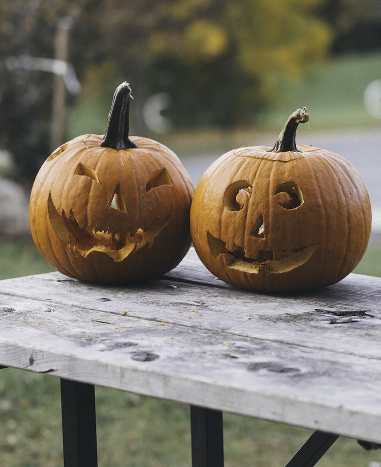 pumpkin carving ideas to take your halloween decor next level