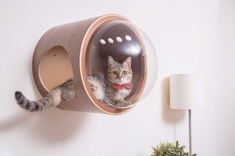 Spaceship Themed Cat Bed