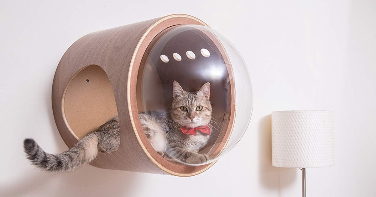 Picture of: Spaceship Cat Bed Collection Turns Sleep Cats Into Space Explorers