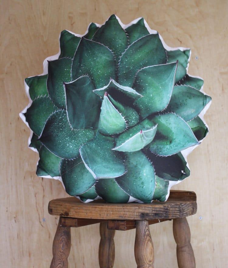 Succulents Succulent Gifts Succulent Pillow
