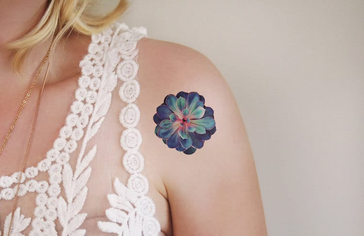Succulents Succulent Gifts Succulent Tattoos