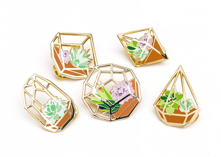 Succulents Succulent Gifts Succulent Pins