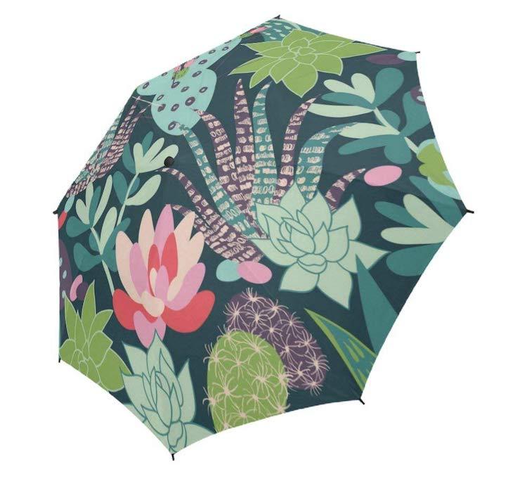 Succulents Succulent Gifts Succulent Umbrella