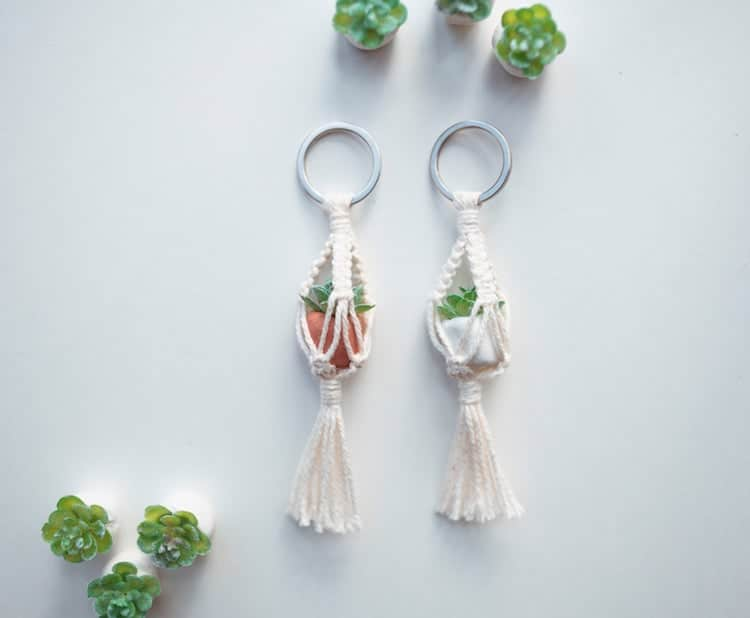 Mini Porte-clés Plante Suspendue