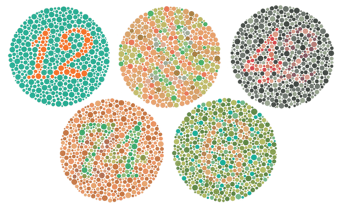 Ishihara Colorblindness Test