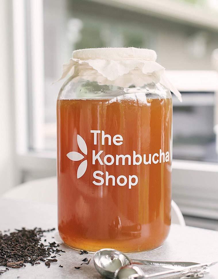 Kit para hacer kombucha