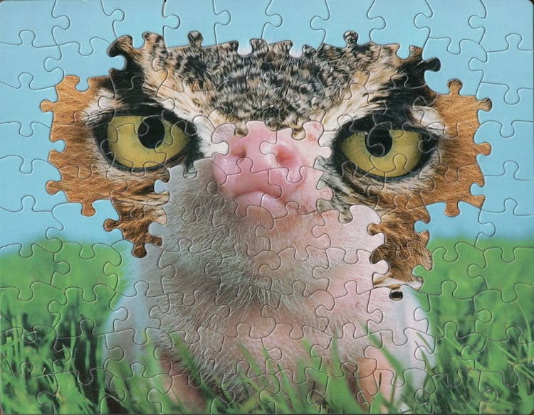 Montage Puzzle Art by Tim Klein