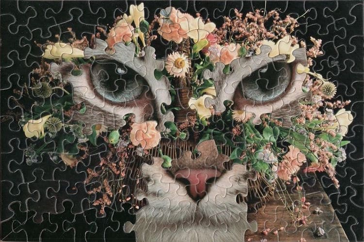 b1f230e3bf043 Artist Creates Surreal Montage Puzzle Art by Mixing up the Jigsaw Pieces