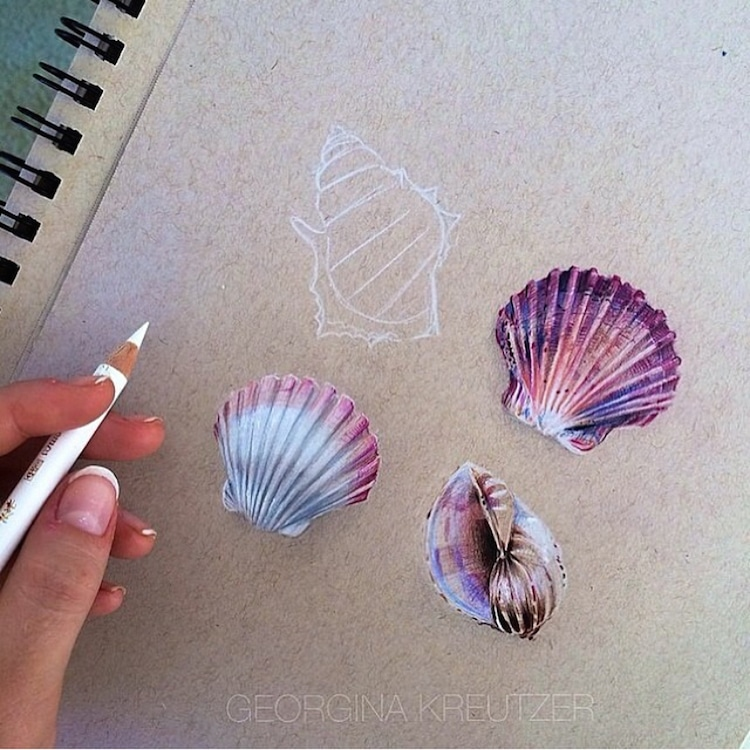 Color Pencil Drawings by Georgina Kreutzer