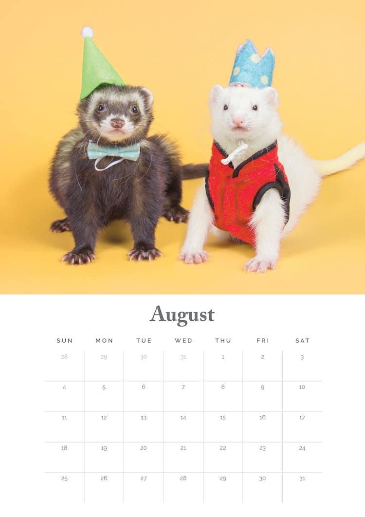 Calendario 2019 Hurones