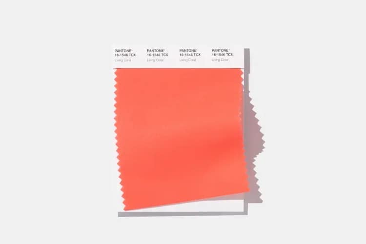 Living Coral - 2019 Pantone Color of the Year