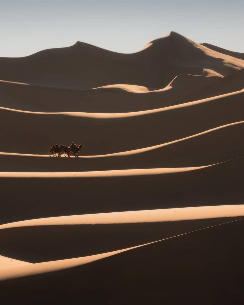 Mongolian Eagle Hunters by Daniel Kordan