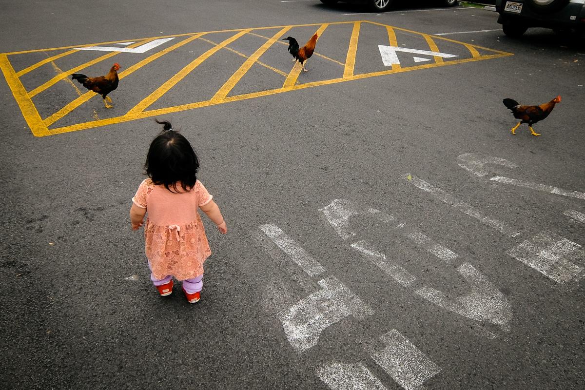 Uno Dos Tres en Japonés