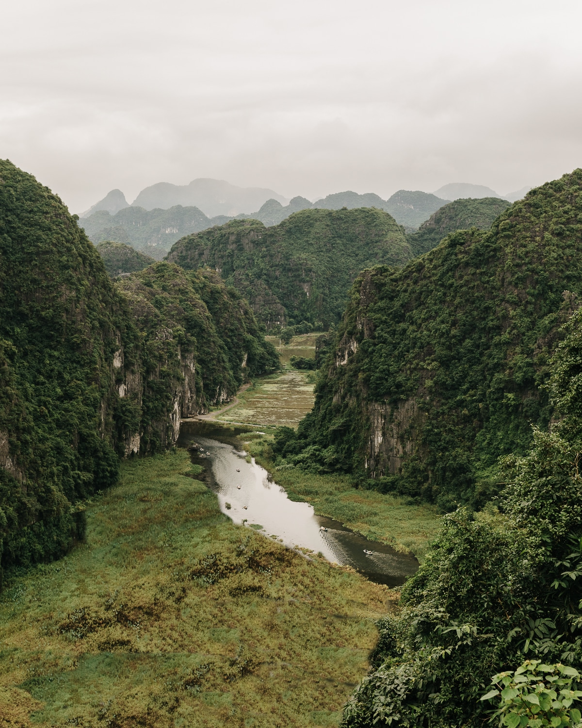 The Ngo Dong river winding through Tam Coc's karst formations.