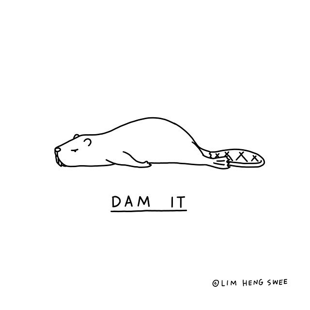 Animal Puns Illustrations by Lim Heng Swee
