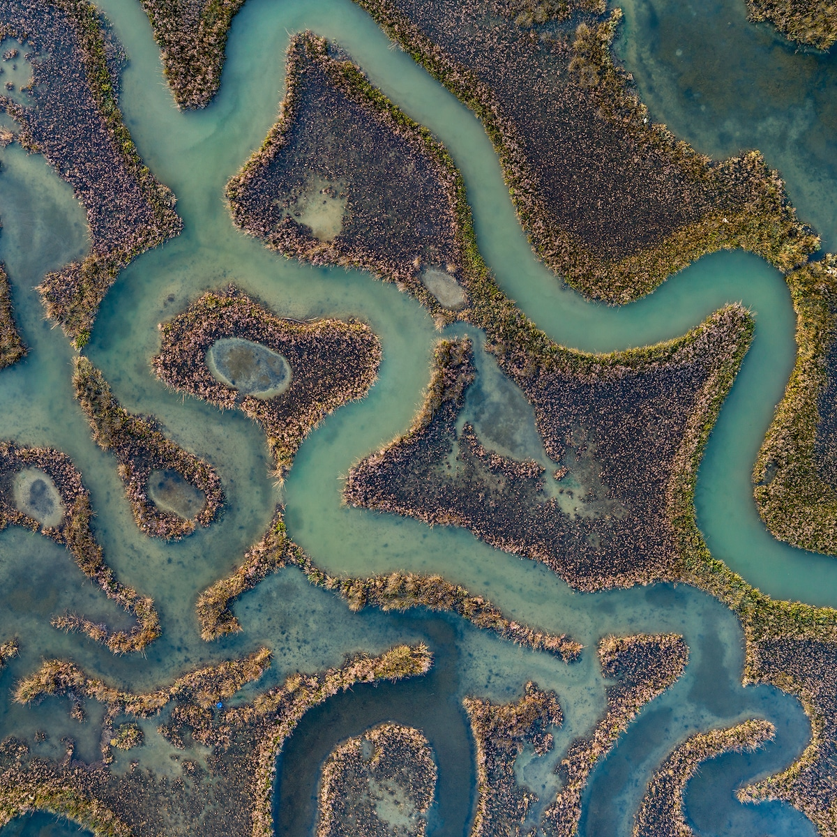 Aerial Photo of a Waterway